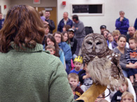 Mary-Beth and Emrys, the barred owl, at the Wallingford Library.