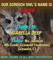 Name our Screech Owl winner