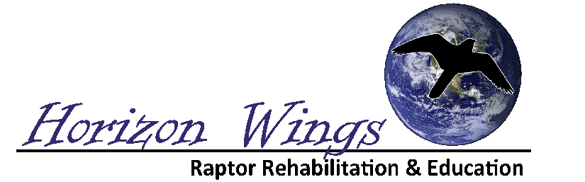 Horizon Wings logo