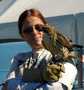 Mary-Beth with Chico the broad-winged hawk.